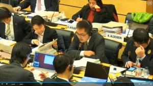 委員からの質問に答える日本政府代表団 関係省庁
